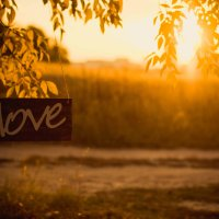Love :: Реш