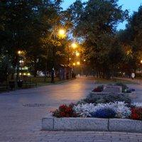 Аллея. Александровский сад. :: Владимир Гилясев