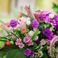 Цветы в интерьере :: Ольга