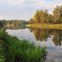 река Руза в сентябре :: Андрей Куприянов