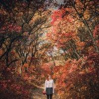 Autumn :: Виталий Бартош