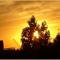 Лучи заката золотом горели :: Самохвалова Зинаида