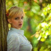 Осенний этюд в Ораниенбаумском парке :: Владимир Гудвин