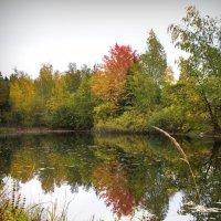Осень золотая :: Юрий Кольцов