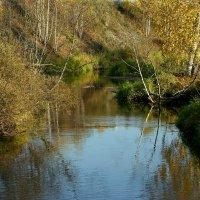 Лесной ручей :: Нэля Лысенко
