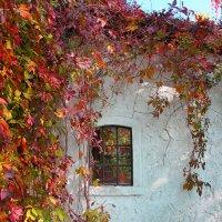 Окно в белой стене :: Дмитрий Лебедихин