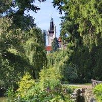 в парке Пругонице, Чехия :: Olena