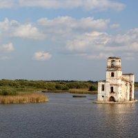 На реке Шексна. :: Сергей Крюков