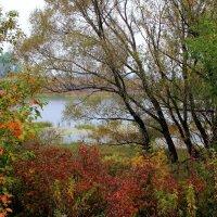 И моросящей грустью осень... :: Лесо-Вед (Баранов)