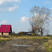 Новый дом с красной крышей. :: Елизавета Успенская