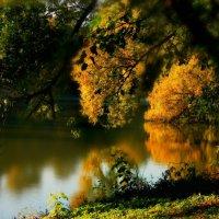 От лета к осени... :: Olenka