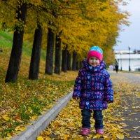 Осень :: Елена Cолодагина