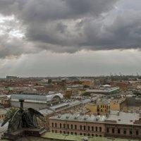 Санкт-Петербург с Колонады.. :: Владимир Питерский