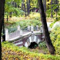 Парковый мостик... :: Cергей Павлович