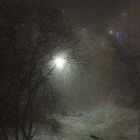 Зимушка-зима! :: Анна Дрючкова