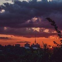 Киев :: Ксения Базарова