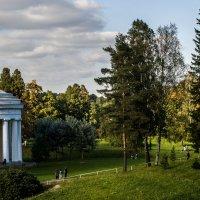 Кусочек Павловского парка. :: ФотоЛюбка *