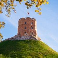 Вильнюс. Замковая гора. Башня Гедиминаса. :: Инта