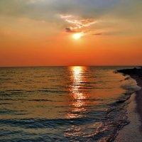 Краски заката :: Ольга Голубева