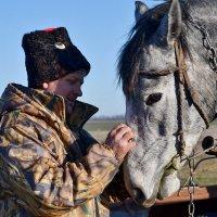 Мой конь :: Сергей
