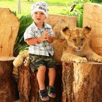 ... рядом львеночек лежит и ушами шевелит... ;-) :: Alexander N