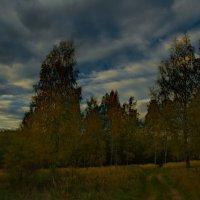 Осенние зарисовки :: Олег Семенцов