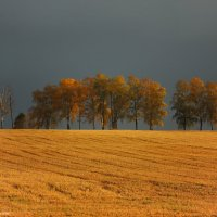 Осенняя пора :: Дмитрий Шилин