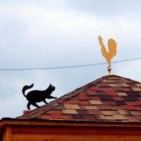 Охота :: Ирина Фирсова