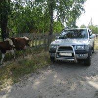 по дорогам Украины :: Timtano4ka Татьяна