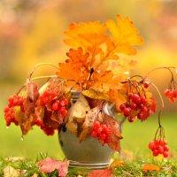 осень :: Nina sofronova