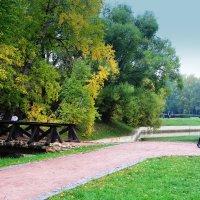 Осень в парке :: Галина Новинская