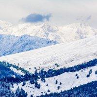Первый снег :: Дмитрий Марков