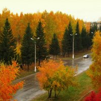 Осень на моей улице . :: Мила Бовкун