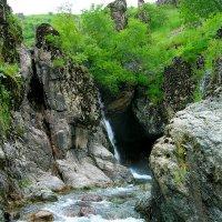 В горах Узбекистана :: Oleg