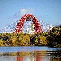 Живописный мост :: Анатолий Цыганок