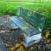 скамейка с листиком и солнышком :: Svetlana AS