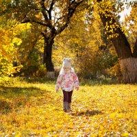 Прогулки по осени :: Victoria Bryfar