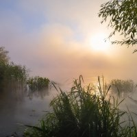 Одно утро на Москва реке :: Юрий Клюшкин