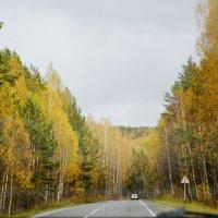 Осень :: Елизавета Кудашева