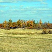 Колдует осень золотая... :: Анатолий Антонов