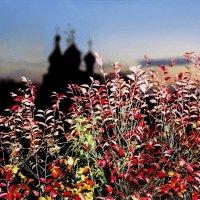 Осень в Вологде :: Валерий Талашов