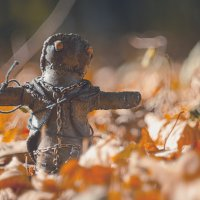 Тобби и осение листья :: Виктор Пушкин
