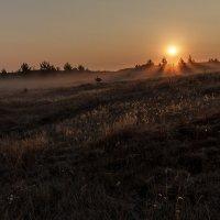 Осенние утро на Иртяше :: Владимир Оськин