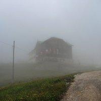 Дом-призрак :: Мария Кондрашова