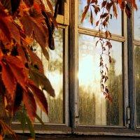 Осень стучится в окошко) :: Алеся Старовойт