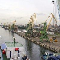 Вдоль Морского канала :: Александр Рябчиков
