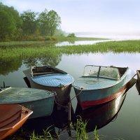 В тихой гавани :: Валерий Талашов