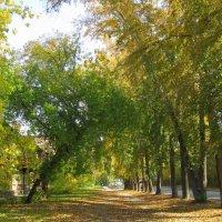 Осенняя городская улочка . :: Мила Бовкун