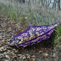 Потерянный зонтик. :: nadyasilyuk Вознюк