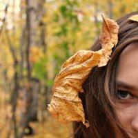 осень :: Татьяна Герасименко